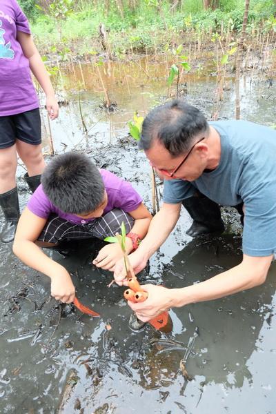Mangrove Forest Planting Sattahip Chonburi - กิจกรรม ปลูกป่าชายเลน, สัตหีบ, จ. ชลบุรี